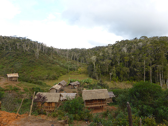 Fair and equitable conservation in Madagascar. Conservation de la nature juste et équitable à Madagascar. Credit O. Sarobidy Rakotonarivo